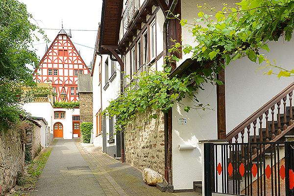 Ferienhaus Domus Vini